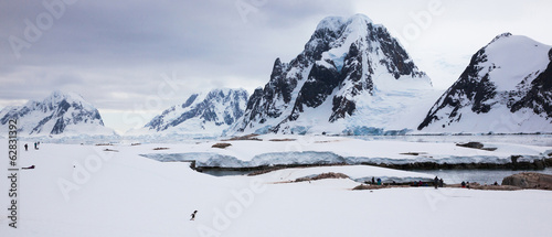 Penguins and people, Antarctica