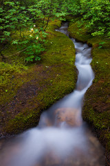 Alpine Stream, a time lapse effect, Jasper National Park, Alberta, Canada