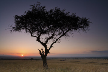 Sunset, Kenya