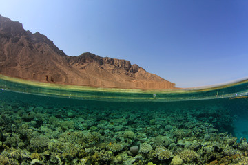 Red Sea reef and desert mountains