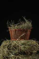 Hay in basket, on dark background