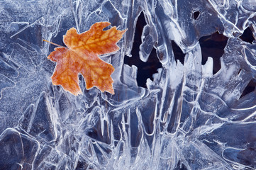 A brown maple leaf, frozen and frosted, lying on a sheet of ice, with jagged patterns of frost and ice crystals.