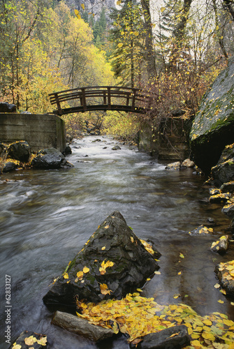 A river running through American Fork Canyon. Small wooden bridge. Autumn foliage, and fallen leaves.