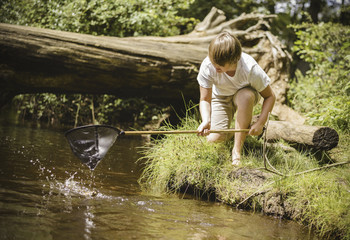 A boy kneeling by the river bank, leaning over and using a small fishing net.