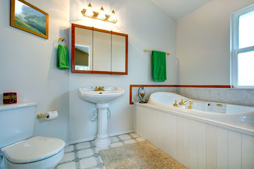 Elegant bathroom intrerior