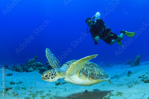 Aluminium Duiken Sea Turtle and Scuba Diver