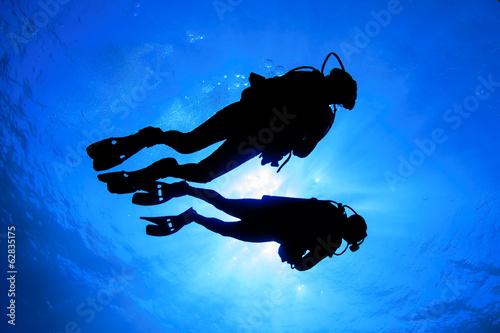 Scuba diving - 62835175