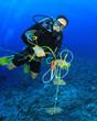 Scuba diver cleans up underwater rubbish - 62837316