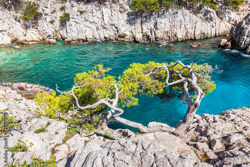 Calanques near Marseille and Cassis in south of France.jpg