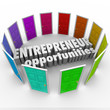 Entrepreneur Opportunities Many Business Paths Directions Choice