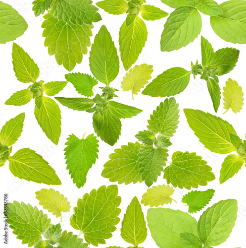 seamless background with mint leaves