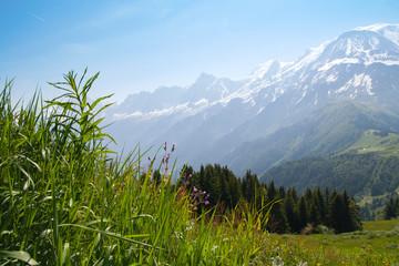 FRANCE - June 30, 2010: Green fields in mountains