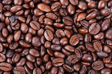 Roasted brown coffee beans, can be used as a background and text