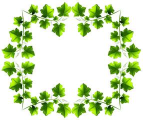 Leafy border design