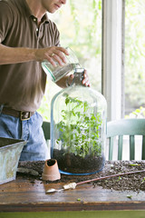 Houseplants. Indoor gardening. A young man repotting and creating a terrarium display within a glass jar.