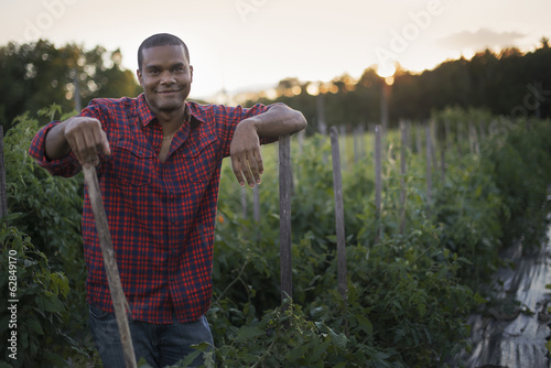 Organic Farmer with Tomato Plants