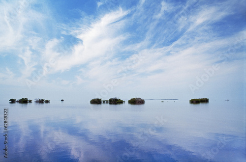 Mangrove islets on coral reef, Dangriga, Belize