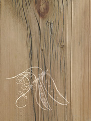 A line drawing image on a natural wood grain background. Fresh peas in a pod on the vine.