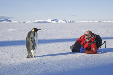 A man lying on his side on the ice, close to an emperor penguin standing motionless.