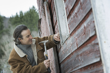 An organic farm in winter in New York State, USA. A man repairing a barn, hammering nails into wooden shingle.