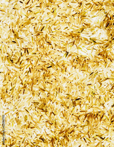 Organic long grain brown rice, white background