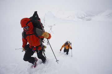 Two skiers ascend a slope on a cloudy and snowy day on the Wapta Traverse, in Alberta, Canada. A classic hut-to-hut ski tour.