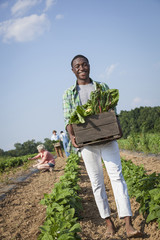 A boy holding a large wooden box of fresh vegetables, harvested from the fields.