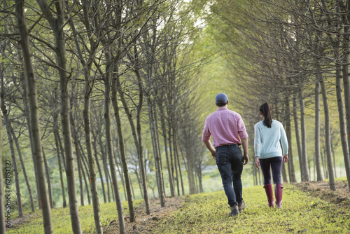 A couple walking between two rows of trees.
