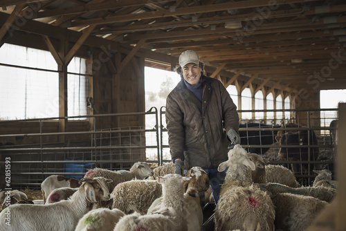 A man in the livestock pen under cover, surrounded by goats.
