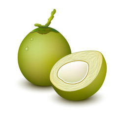 Young green coconut on white background. Vector illustration