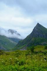 Fog in scandinavian mountains landscape