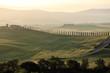 paesaggio toscana veduta vallata e alberi