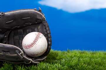 Baseball and Glove on Grass