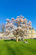 Schlosspark Stuttgart im Frühling