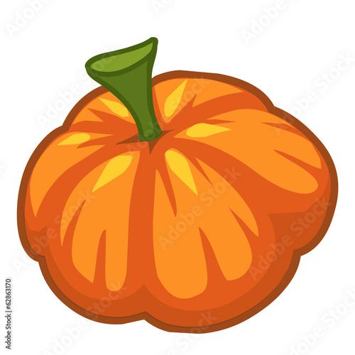 Pumpkin isolated illustration