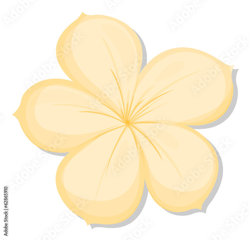 A five-petal yellow flower