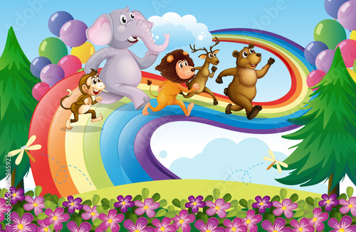 A group of animals at the rainbow