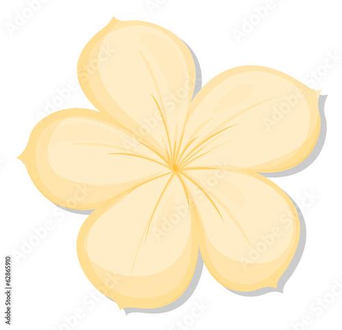 A five-petal yellow flower