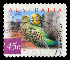 Stamp printed in the Australia shows Budgerigar