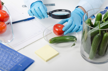 Tomato inspected in phytocontrol laboratory