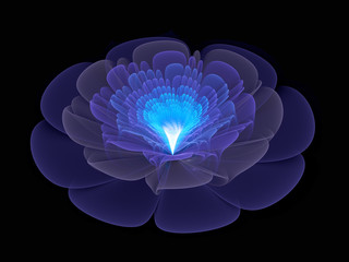 blue abstract flower blossom