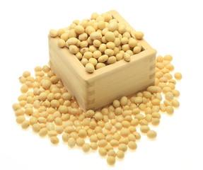 枡の中の大豆
