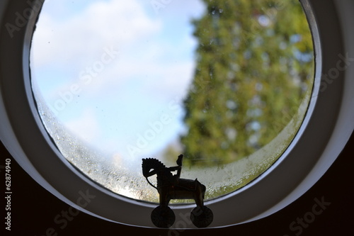 Minature horse window