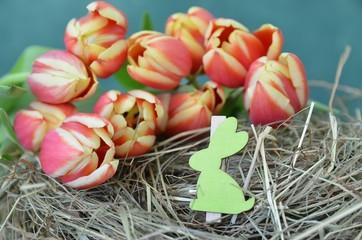Tulpen im Stroh zu Ostern mit Hase