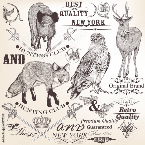 Collection of vector hand drawn decorative elements in vintage s