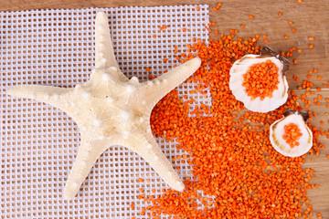 Sea salt crystals with sea shells, star fish