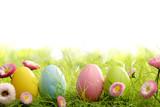 Fototapety Easter eggs in grass