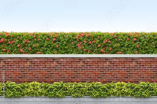 shrubs and brick fence on blue sky background