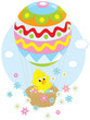 Easter Chick flies in a balloon and scatters flowers