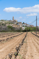 Corbera de Ebro village at Tarragona, Spain